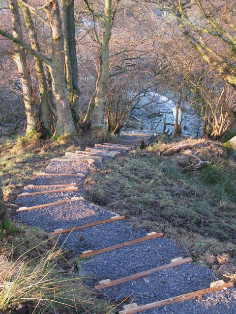 Steps on the footpath down to Acton Burn