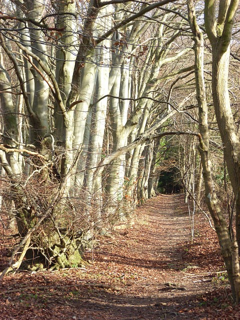 Footpath, West Wycombe