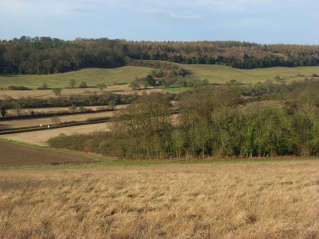 Meadow and woodland, West Wycombe
