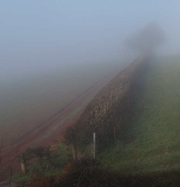 Misty hedge, Gallows Gate