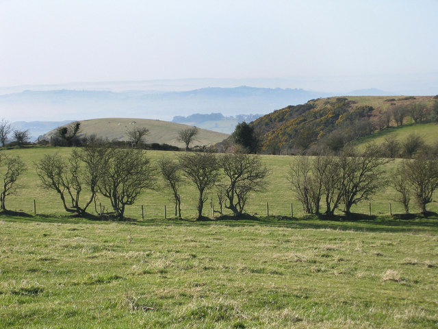 Rorrington Hill from Gorsty bank