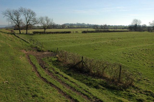 Ridge and Furrow field near Arlingham