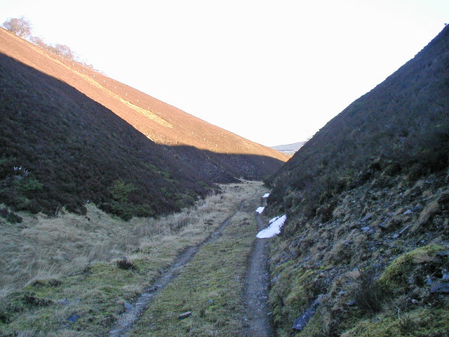 Track beside the Quillichan Burn