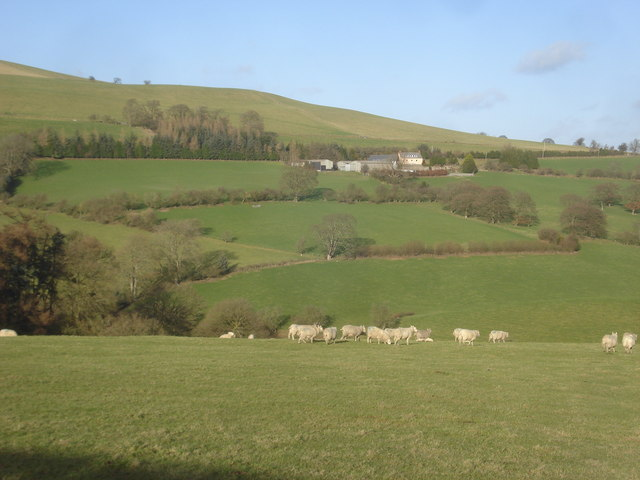 Pasture land above Wolfpits Farm