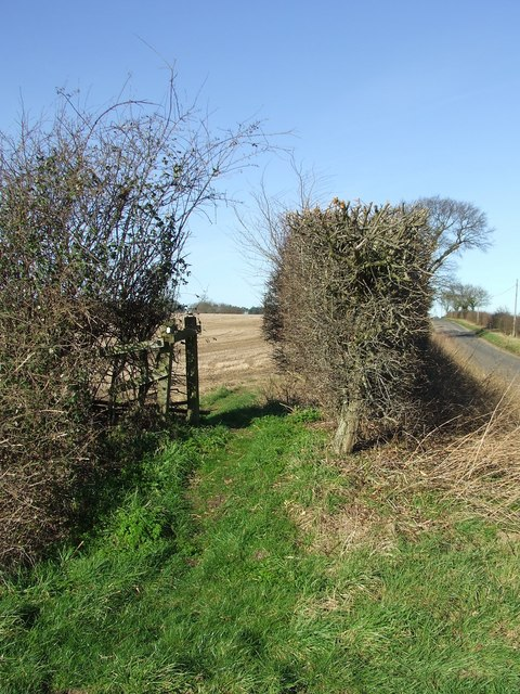 Peddars Way footpath through hedge