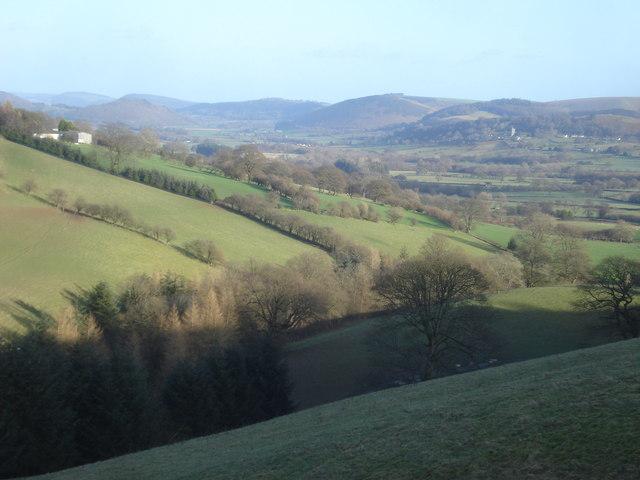 Sheep pasture near Stockenny Farm