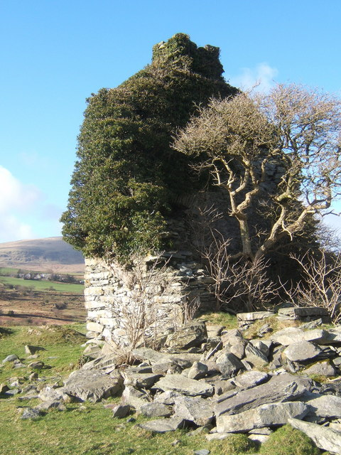 """West wall of Frith Hall with tree """"indoors"""""""