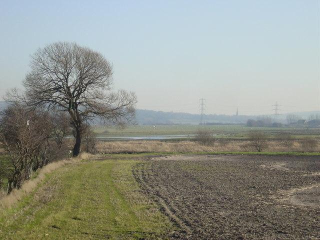 Mossland view