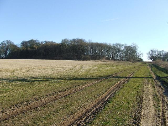 Blakeneyhill Plantation