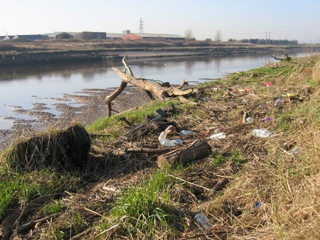 Flotsam on the bank of the River Dee/Afon Dyfrdwy