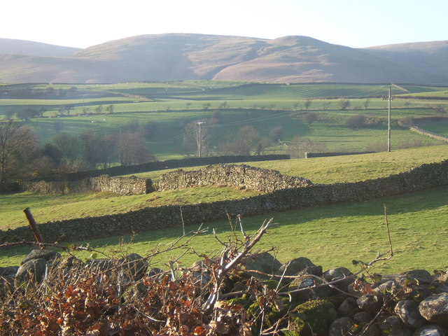 Fields near Hallthwaites, looking to White Combe