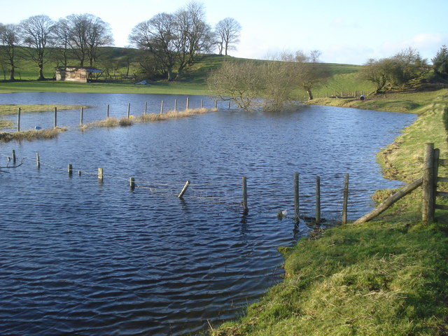 Enlarged pond near Molecatchers Wood