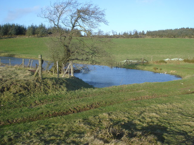 Pond at Molecatchers Wood