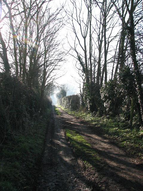 Driveway to Manor Farm
