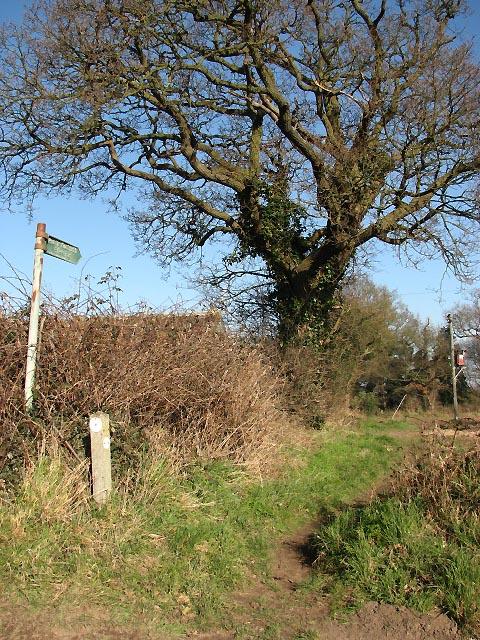 Public Footpath to Blickling