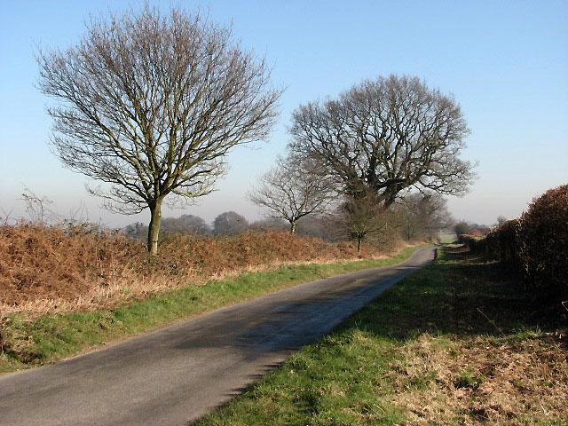 View NE along Heydon Road