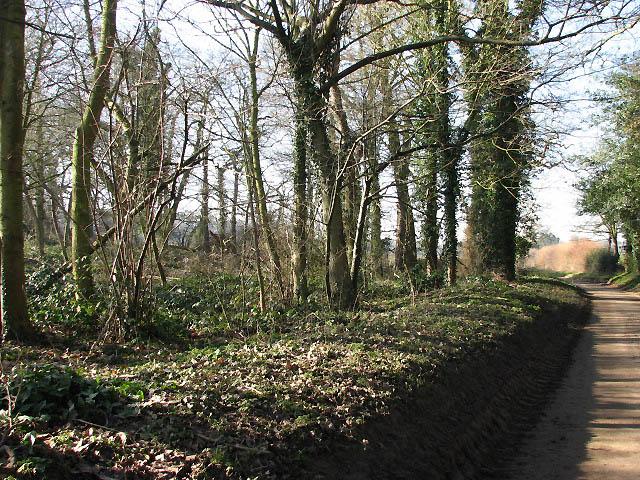 Aylsham Road