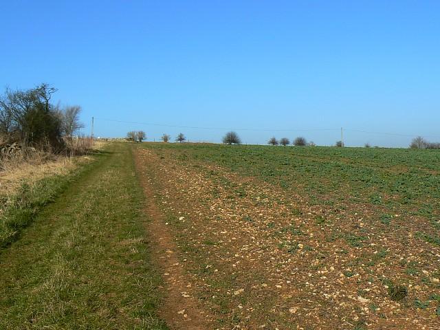 Windrush Way long distance path, near Hawling