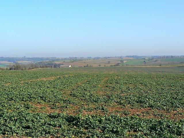 Farmland near Hawling