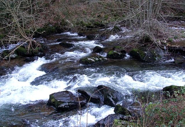 East Lyn River