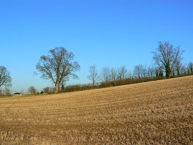 Farmland and trees, near Coln St Aldwyn