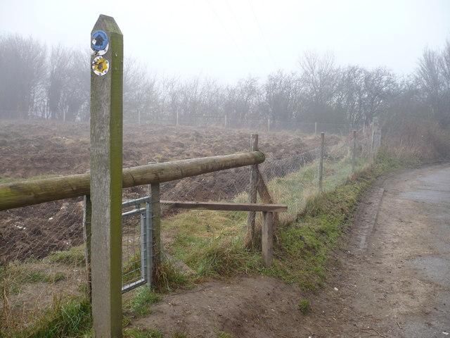 Path between Vicarage Lane and Brogdale Road