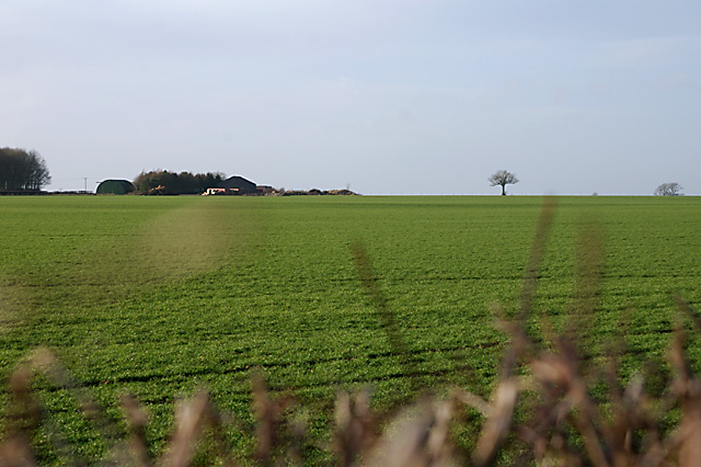Looking across to Julian's Barn Farm