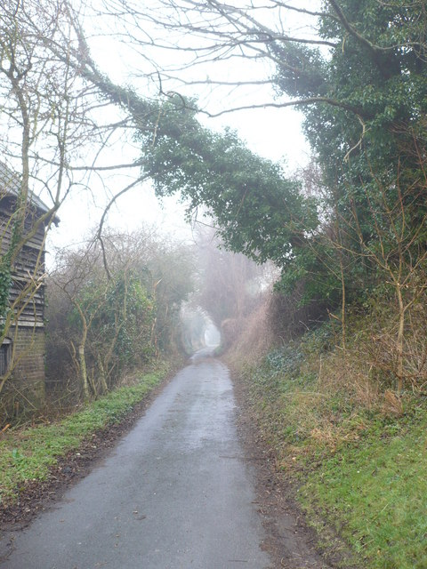 Mutton Lane in the fog
