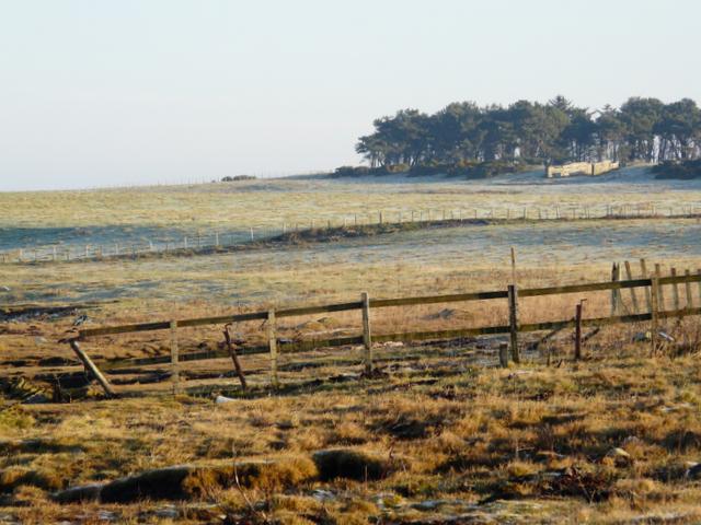 Farmland on Tarbat Peninsula
