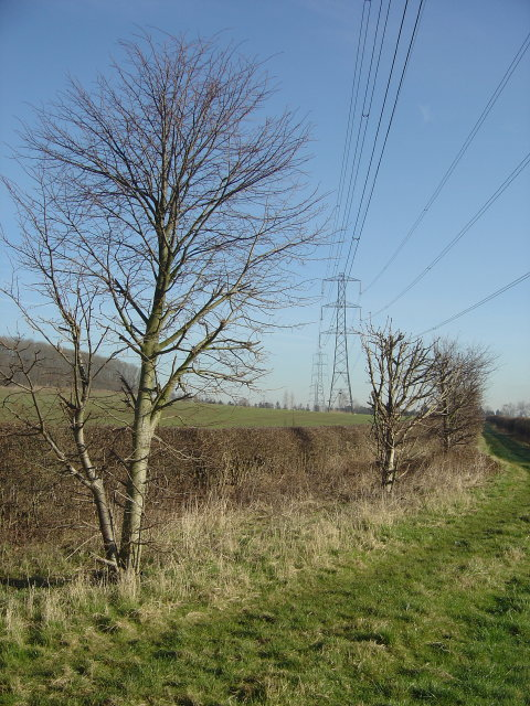 Power lines near Winking Hill
