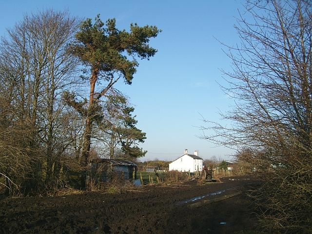 Moss Cottage, Drumburgh