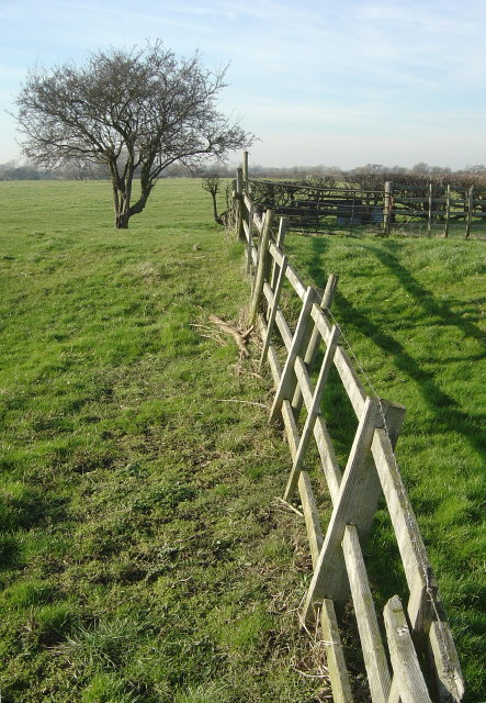 Fence and fields