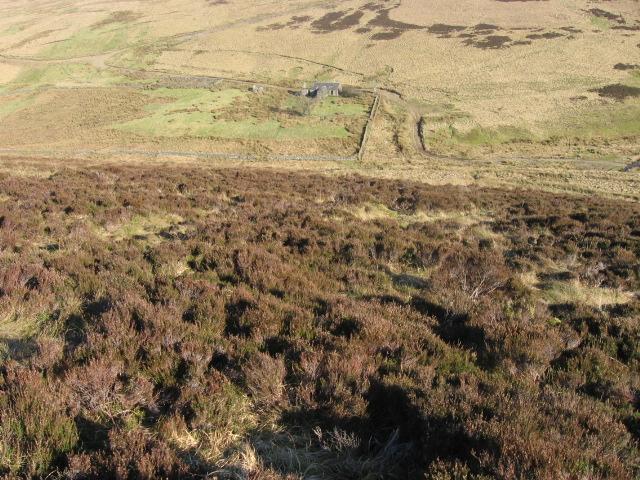 Reecleuch Hill hillside towards Snarheadh