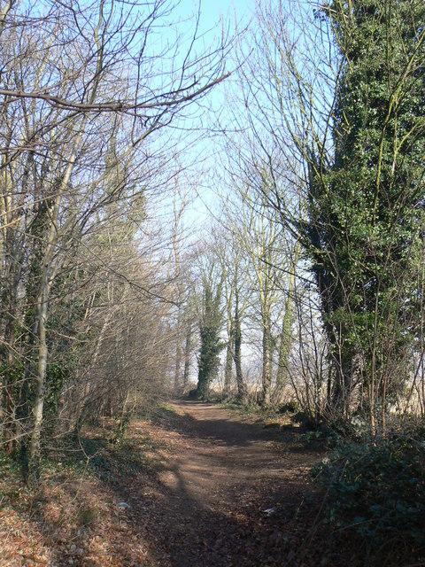 Newfield Lane
