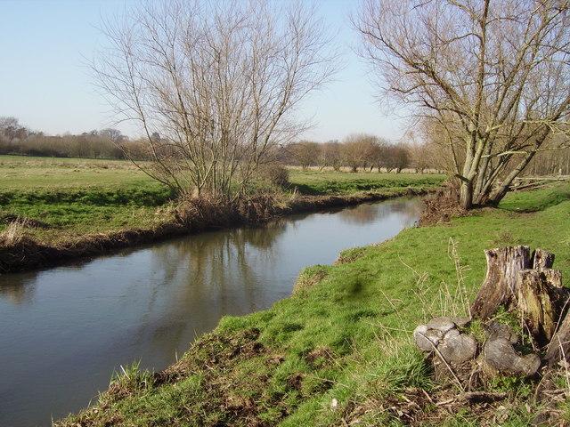 River Blackwater at Hawley Meadows