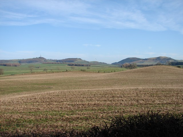 Arnmannoch: Bogrie Lane fields