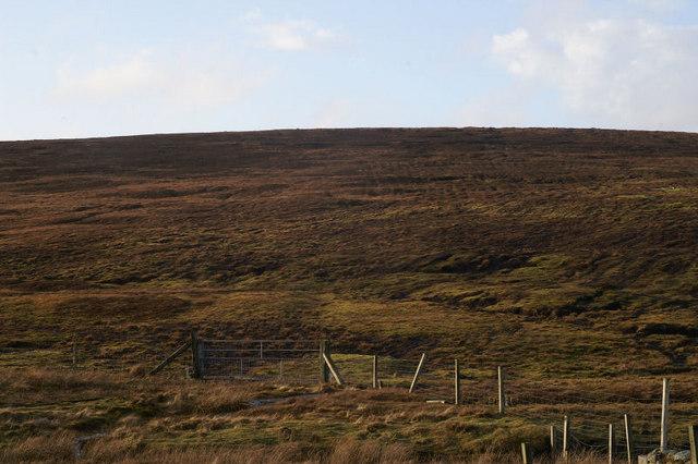 Hill of Dalsetter