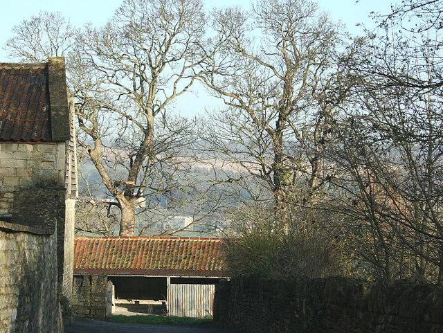 2008 : Ashley Farm, near Box