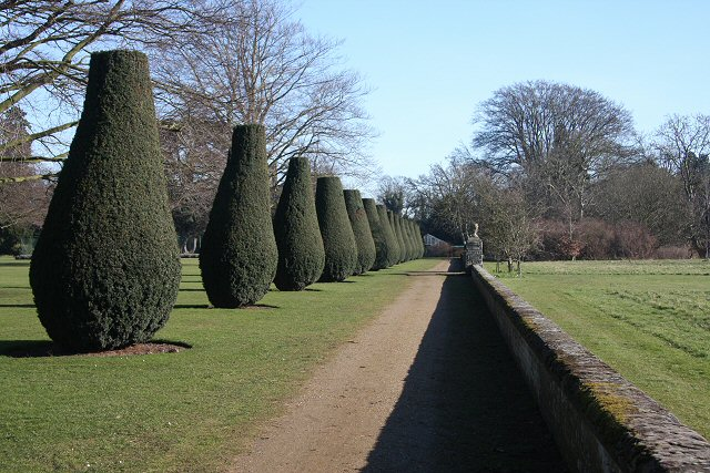 Ornamental trees at Culford School