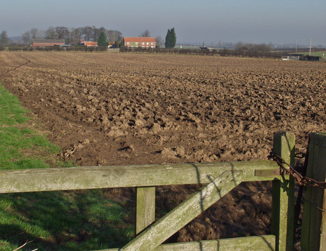 Dog Kennel Farm fields