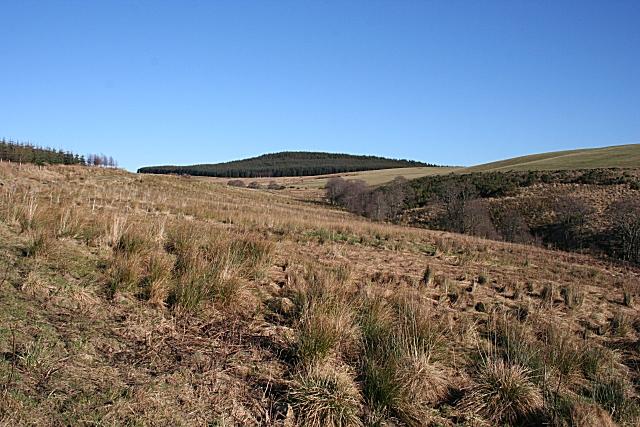 Burn of Brownhill