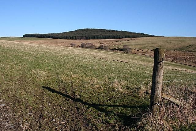 Brownhill
