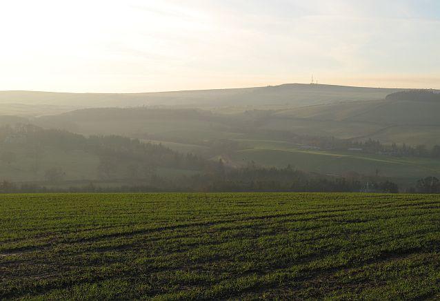 Winter crops above Ferniehurst