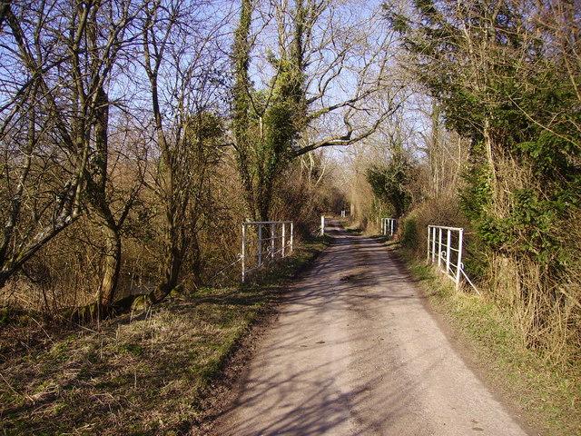Lower Bullington - Narrow Road