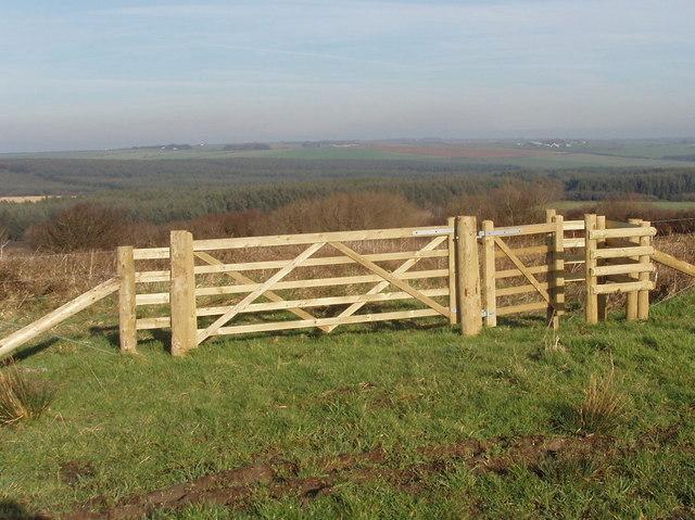 Gate to access land at Summerville Cross