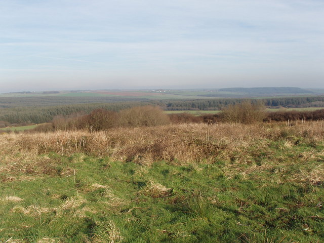 Bursdon Moor at Summerville Cross