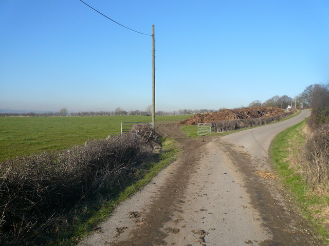 Longcourse Lane - and a 'Pile'