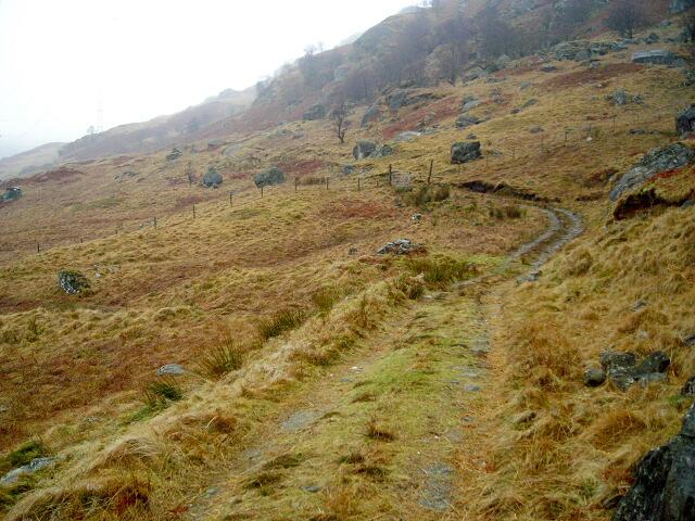 A Track Leading up a Misty Glen Gyle