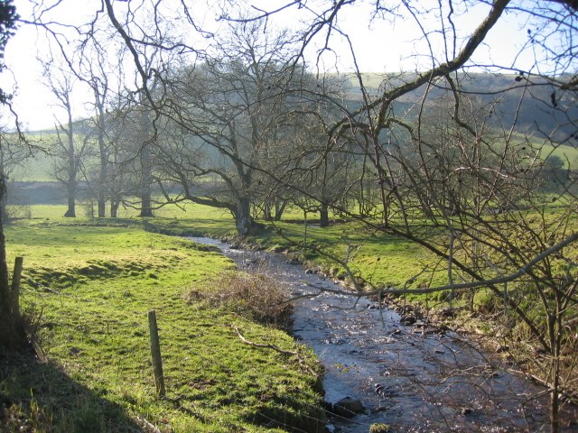 The Cwm Erchan Brook