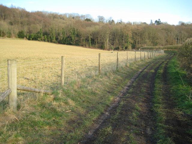 Downley: Public bridleway to Hughenden Manor